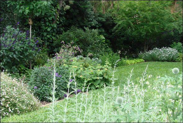 Jane best paisajista jardin olivos jardines for Jardin paisajista
