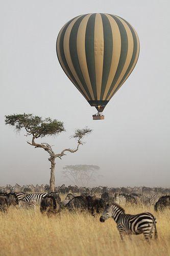 O ecossistema do Serengeti, localizado entre o norte da Tanzânia e o sudoeste do Quênia, na África Oriental.: