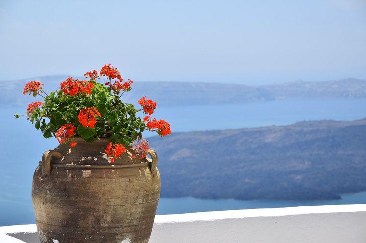 Santorini you are amazing ❤️ #santorini #view #greekislands