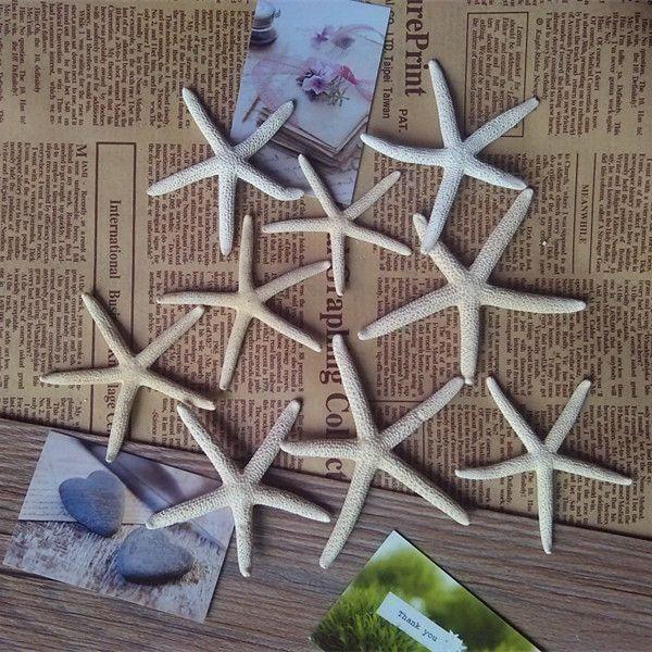 """Pas cher 10 PCS/lot Naturel Starfish Réel Doigt Starfish Draperie Tenir 2 """" 4"""" de Grands mariages ou partie décoration de la maison sea star sea shell, Acheter  Coquilles et Étoiles de Mer de qualité directement des fournisseurs de Chine:plage décor petit brun starfish pour nautique décor, bijoux, ou artisanat.TAILLE: environ 6-10 cmPS: naturel étoile de m"""