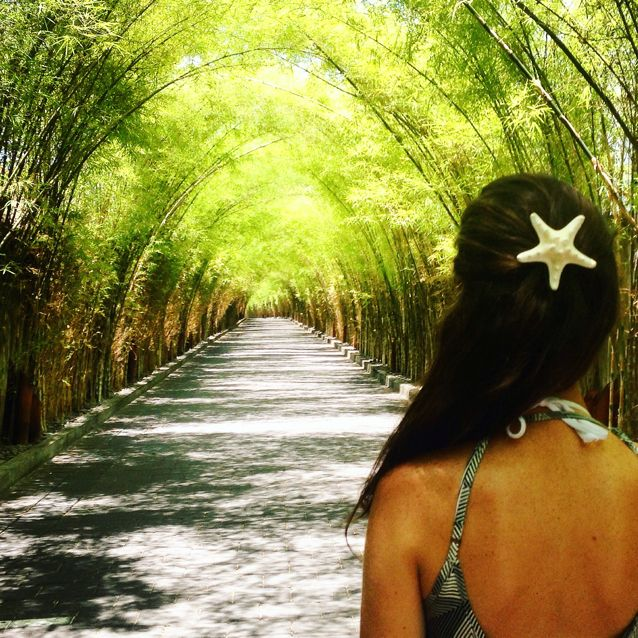 W Retreat & Spa Bali - Seminyak in Badung, Bali  Starfish clip by fancy things by nancy  http://fancythingsbynancy.etsy.com