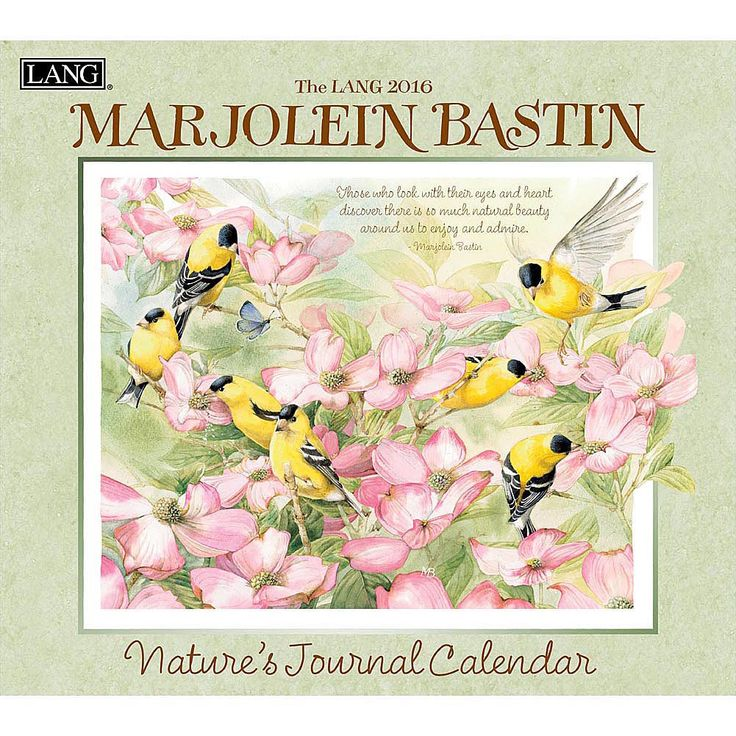 Marjolein Bastin Nature's 2016 Wall Calendar | $15.99 | The artist's eye of Marjolein Bastin transforms the natural beauty she sees all around her into marvelously detailed watercolors of birds, butterflies, flowers, grasses, and other creations of nature.