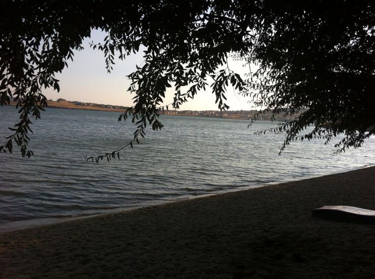 Zeytin ağaçlarının altında bir kumsal, Cunda Adası