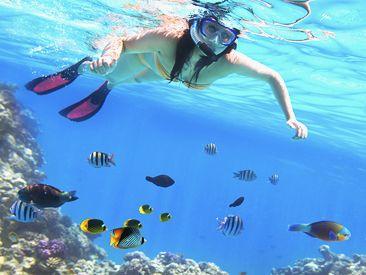 Snorkelen bij het een na grootste koraalrif van de wereld. Santa Lucia Cuba