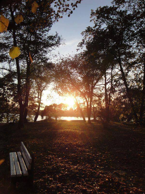 Zachodzące słońce nad Jeziorem Durowskim. #wagrowiec #wielkopolska #polska #poland #jeziorodurowskie #lake #plaza  #wągrowiec #sunset #zachodslonca #slonce Fot. Olga Bijan