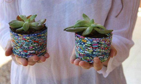 Two Colorful Small Succulent Planter