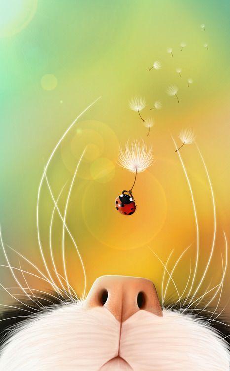 Ladybug by Jessica Aoki Almeida. Omg if this was a puppy dog nose.