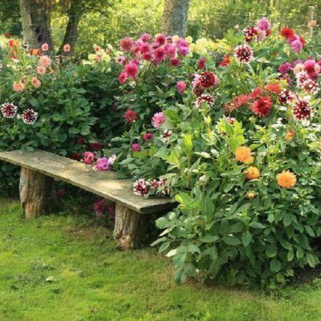 50 Décorations de jardin rustiques 22