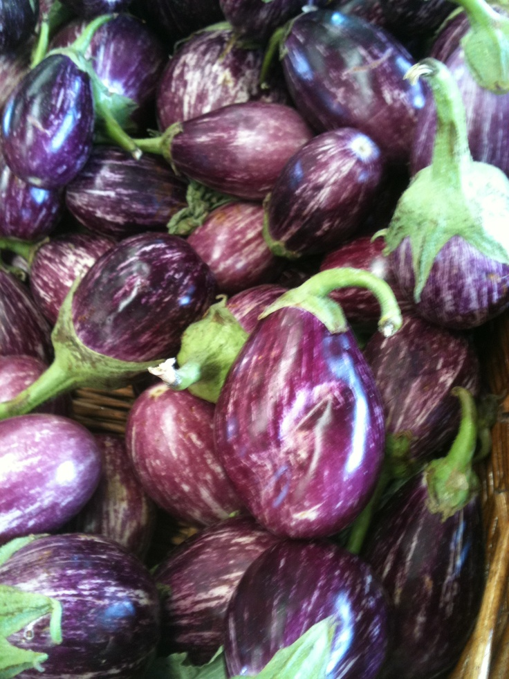 Eggplant at the Greensboro Farmers Market #GSO BentTuba.com