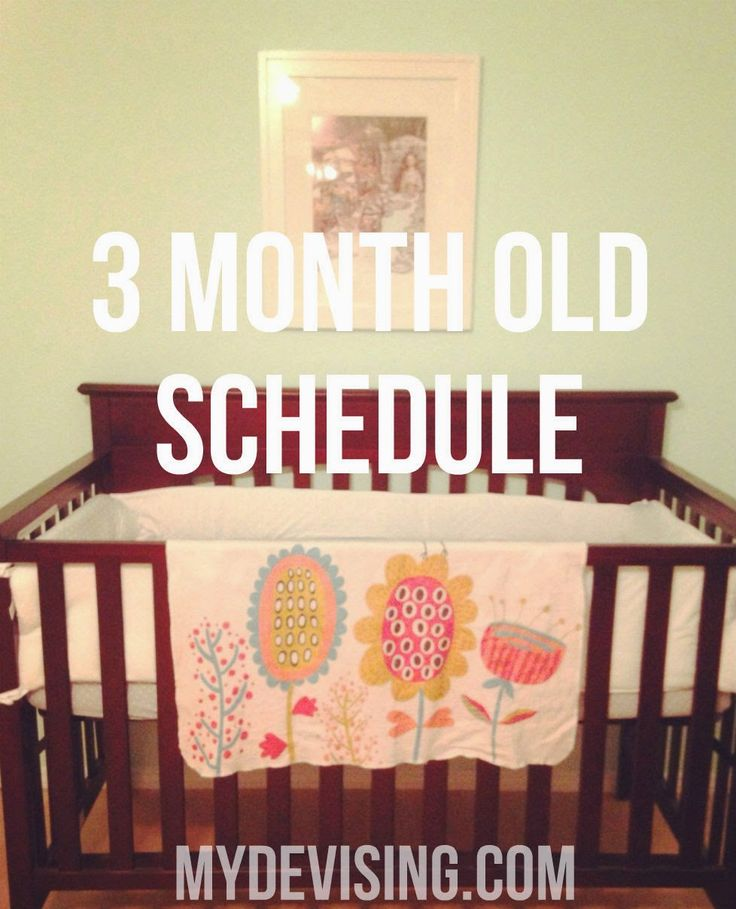 My Devising: 3 month old schedule