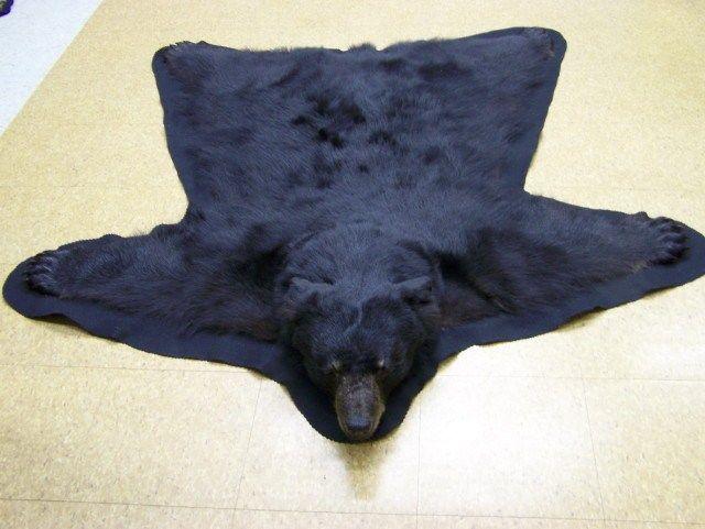58 Bear Skin Rugs Bear Rug Bear Skin Rug Animal Rug
