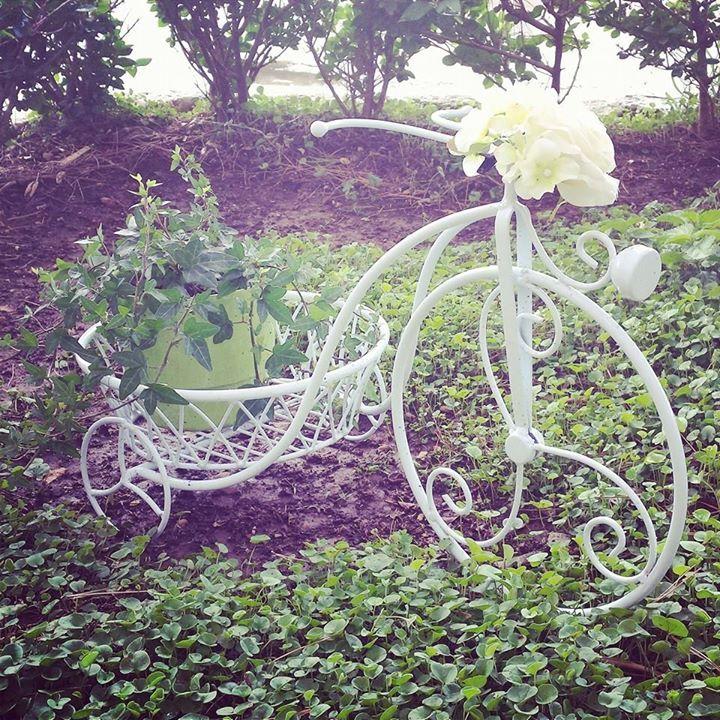 Cure garden bicyclele.