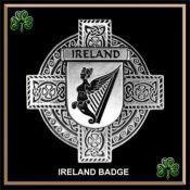 Irish Coat-of-Arms Cap Badge/Brooch