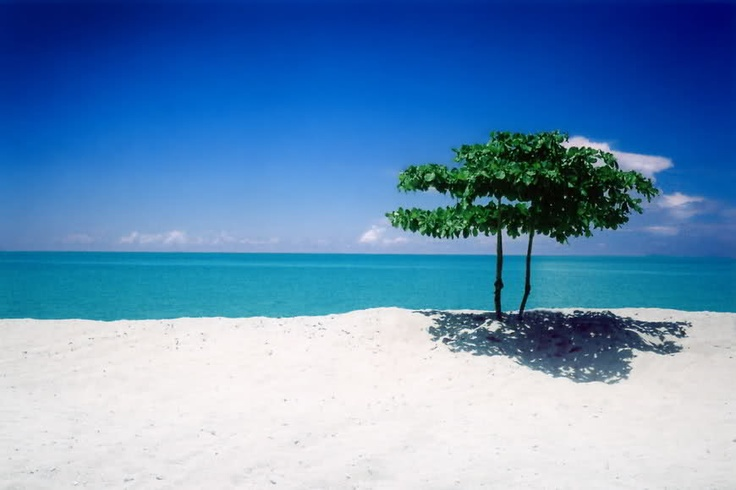 let's go to Pantai Pasir Panjang, Ngur Bloat, South East Maluku, Indonesia