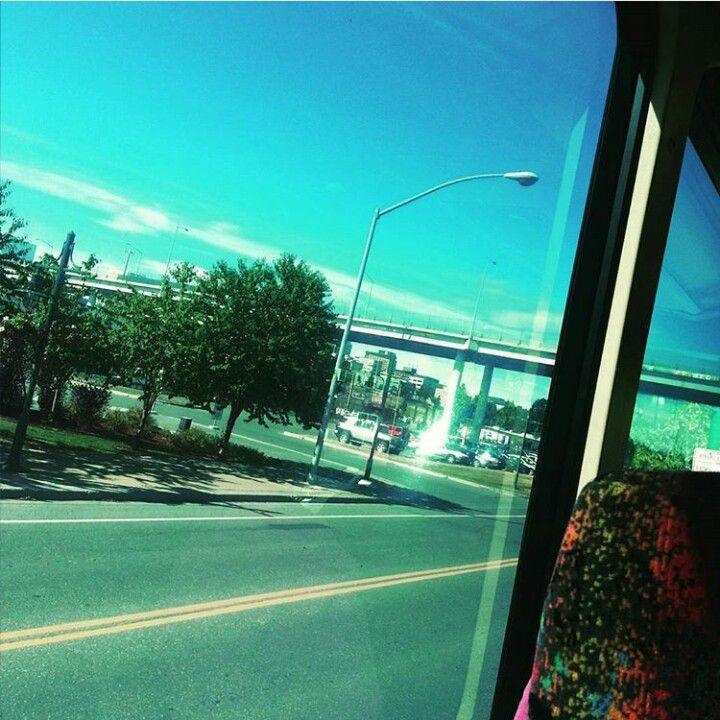 Bus tour in Alaska