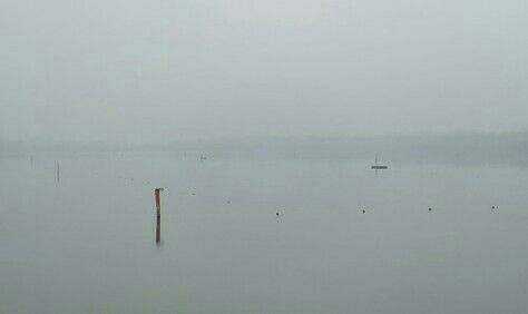 #fog #winter #mincio #rivers #mantova