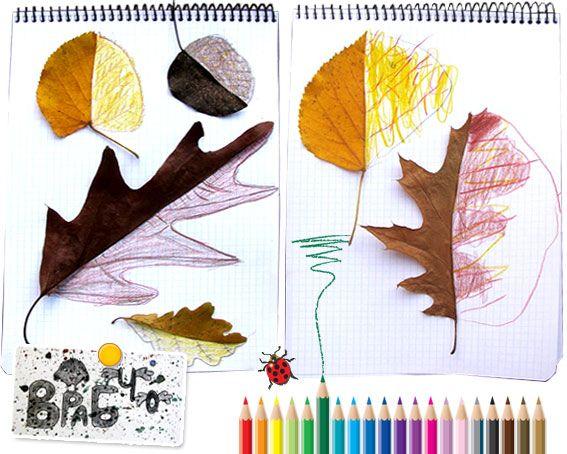 Symmetry leaf drawings