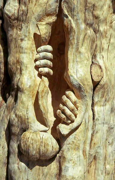 12 best Wood Art Sculpture And Tree Art images on Pinterest | Tree ...