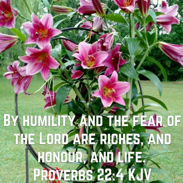Proverbs 22:4 (KJV)