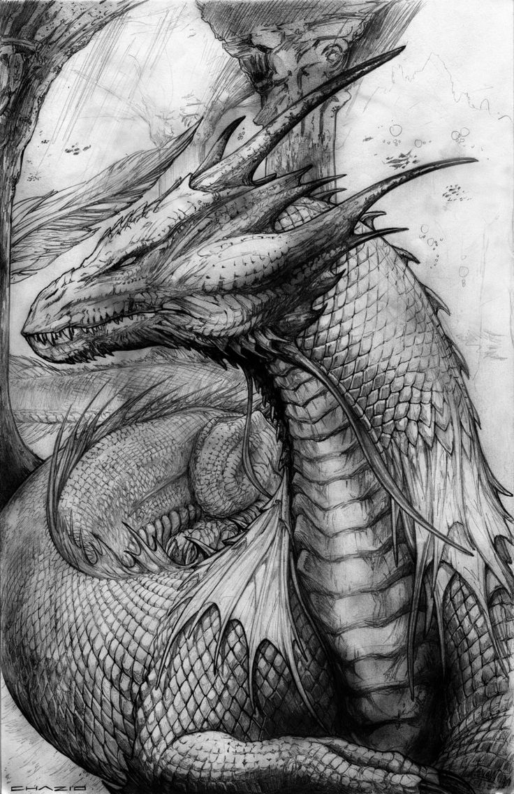 Sand Dragon by ChuckWalton  *  Dragon Fantasy Myth Mythical Mystical Legend Dragons  Wings Sword Sorcery Magic Coloring pages colouring adult detailed advanced printable Kleuren voor volwassenen coloriage pour adulte anti-stress kleurplaat voor volwassenen Line Art Black and White