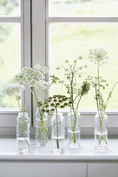 Nice little flowers in your window