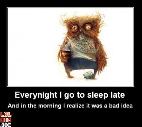 Funny Sleepy Meme : Best images about sleepy on pinterest smiley faces