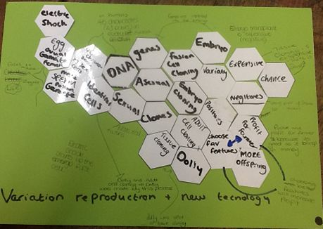 hexagons strategy