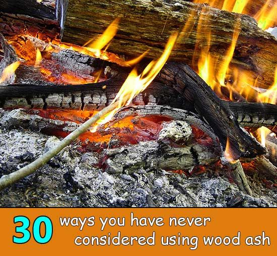 30 Ways You Have Never Considered For Using Wood Ash