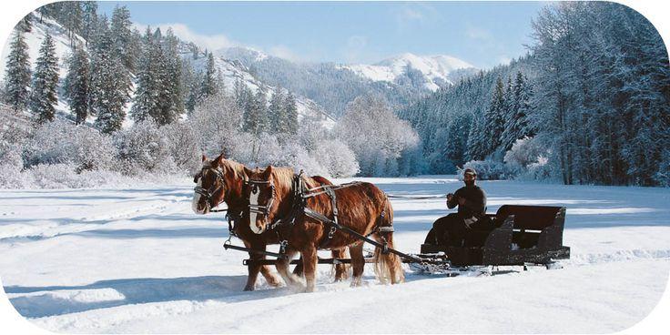 Eagle creek ranch sleigh rides sled ride dog sledding