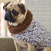 Douglas Dog Knitting Pattern : 17 Best images about Dog coats on Pinterest Chihuahuas, Crochet dog sweater...