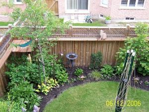 25 Best Ideas About Cat Fence On Pinterest Top Cats