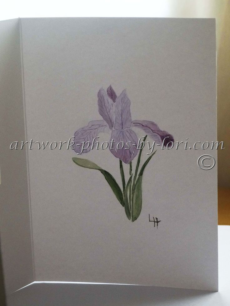 hand painted watercolour notelet of an iris(inside view)