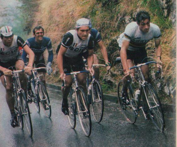 Giro di Lombardia 1977, 8 ottobre. Seveso > Como. Da sin. Giambattista Baronchelli (1953), Roger De Vlaeminck (1947), Giuseppe Saronni (1957), Francesco Moser (1951)