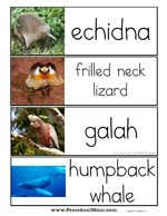 This is a printable set of Australian Animals from AUSTRALIAN ANIMALS: Alphabet word wall cards