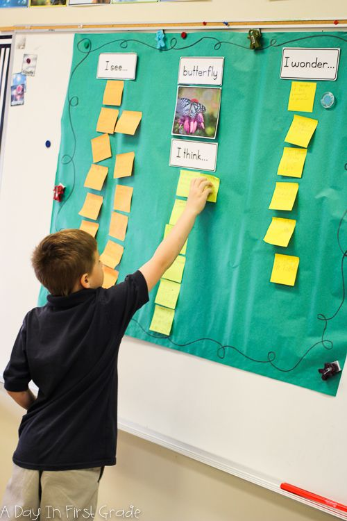 """Kindergarten students create an """"I see, I think, I wonder"""" chart during a butterfly inquiry"""