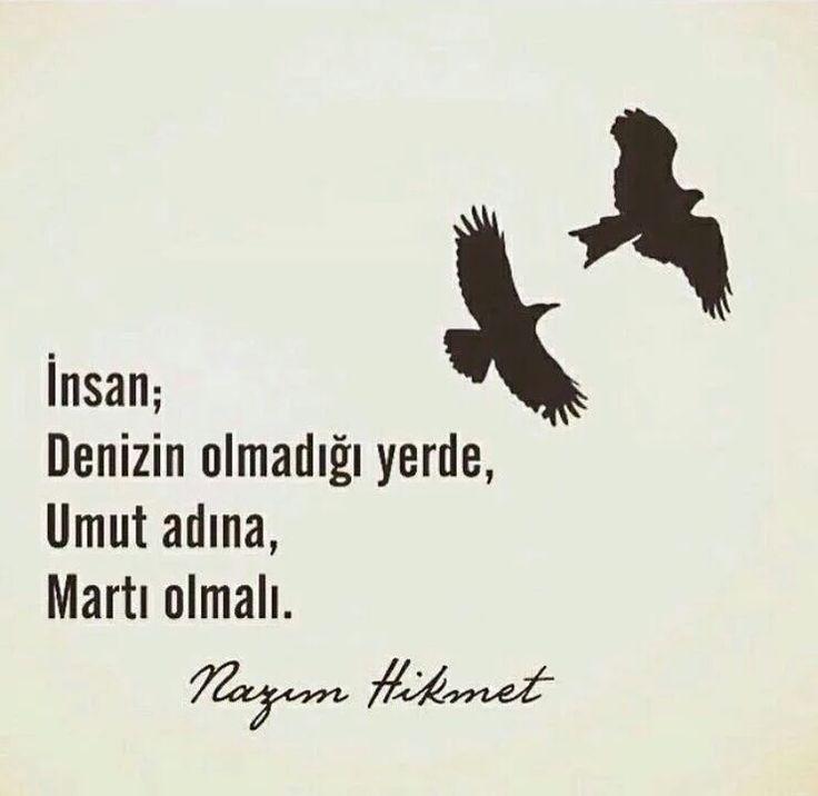İnsan;  Denizin olmadığı yerde,  Umut adına,  Martı olmalı.   - Nazım Hikmet  #sözler #anlamlısözler #güzelsözler #manalısözler #özlüsözler #alıntı #alıntılar #alıntıdır #alıntısözler #şiir #edebiyat