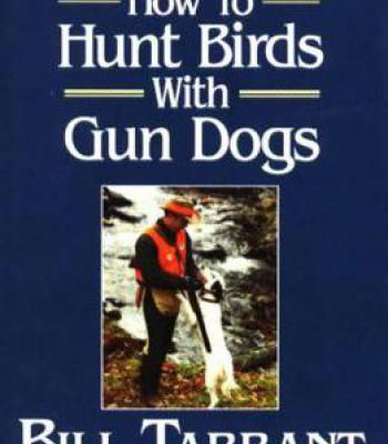 How To Hunt Birds With Gun Dogs PDF