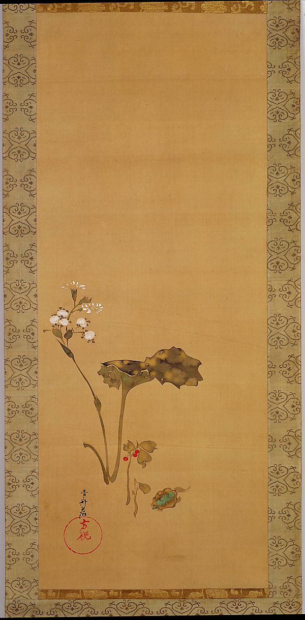 Flowers and a turtle -  Ogata Kōrin 尾形光琳 (1658-1716), Edo period, 19th century