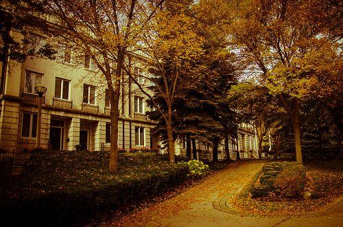 Beautiful Fall lanscape