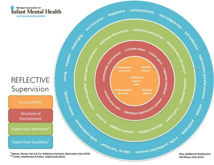 Reflective Supervision Wheel Reflective Learning Reflective Practice Clinical Social Work