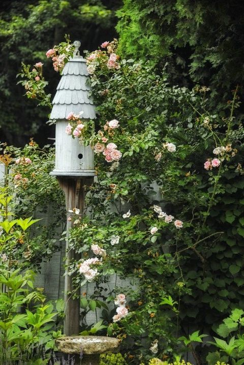 For my garden: cute Birdhouse in Cottage Garden!