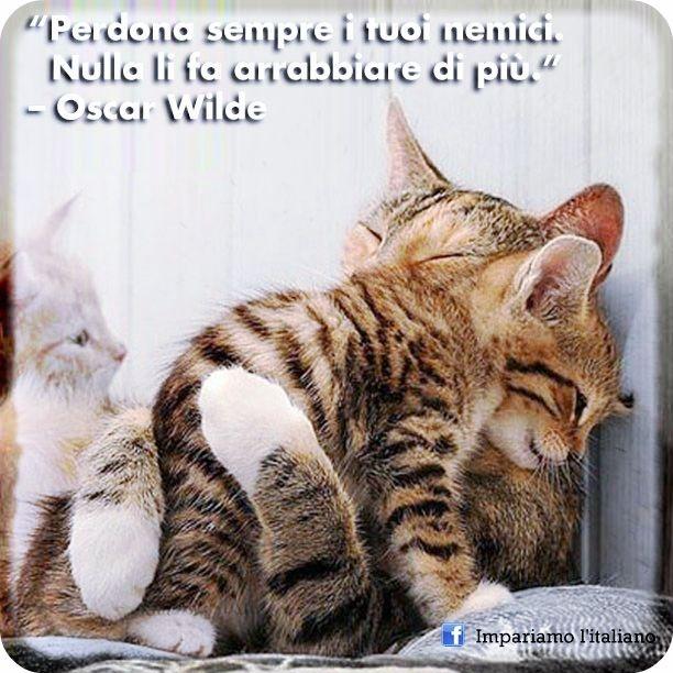 Perdona sempre i tuoi nemici. Nulla li fa arrabbiare di più.  Oscar Wilde