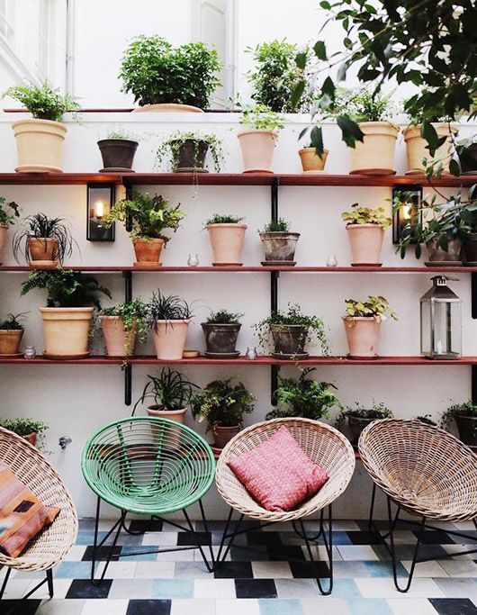 all the little plants and boho chairs