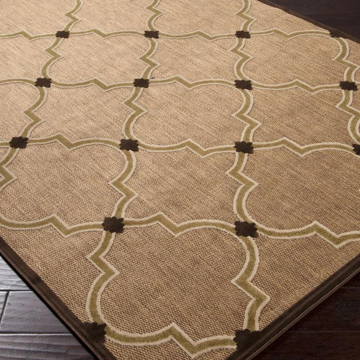 This rug is indoor outdoor 5x7 Guest Apartment