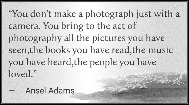 """""""You don't make a photograph just with a camera. You bring to the act of photography all the pictures you have seen,the books you have read,the music you have heard,the people you have loved.""""  -Ansel Adams   #dontmakeaphotographjustwithacamera #bringtotheactofphotography #allpicturesyouseen #booksyouread #musicyouheard #peopleyouhaveloved #anseladams #quote #captureamoment #pausetime #tjsphotography #timeless #memories #discoverwi #exploremn #eventservices #officiant #weddings #nature…"""