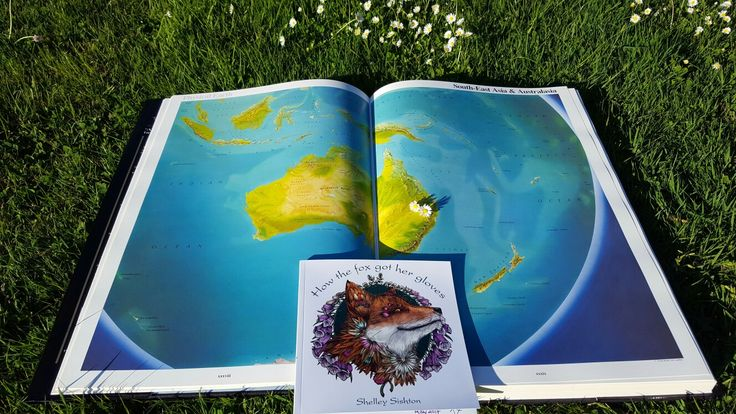 Fifi the fox has now travelled as far as Australia in her adventure How the fox got her gloves 🐾🌞