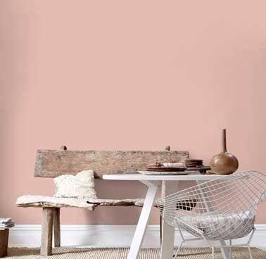 Peinture salon scandinave avec une couleur rose poudré