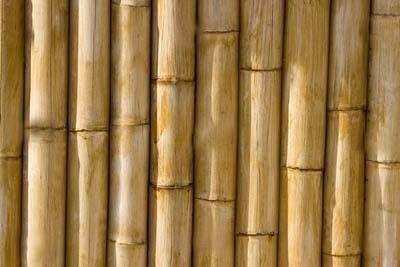En Detalle: Las Uniones en Bambú,