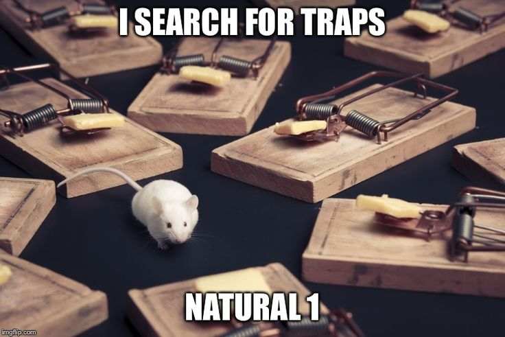I SEARCH FOR TRAPS NATURAL 1 | made w/ Imgflip meme maker