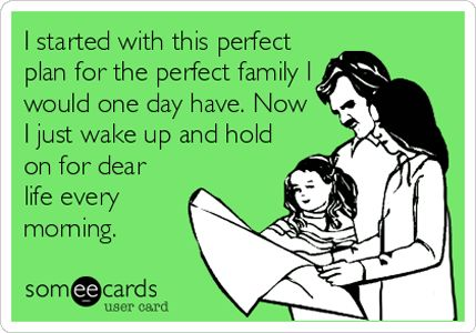 I started with the perfect plan for the perfect family I would one day have. Now I just wake up and hold on for dear life every morning.
